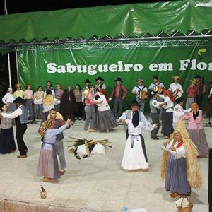Flor do Sabugueiro - Associação Recreativa, Cultural e Desportiva de Dalvares