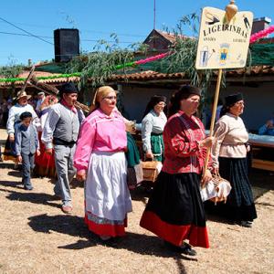 Rancho Folclórico As Ligeirinhas de Antões