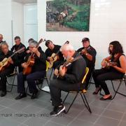 Grupo de Tocadores de Viola da Terra de São Jorge