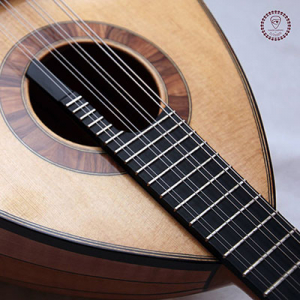 Gualter Campinho Luthier